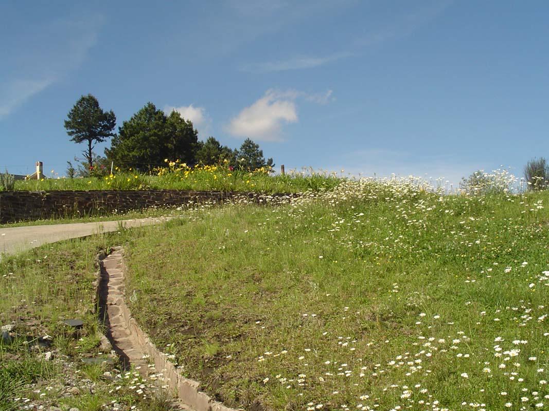 Cerro San Javier (6)